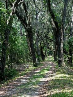 st. simons island - this is close so maybe I would finally get to see one of these beautiful places ;-)