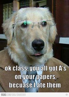 Best teacher ever.