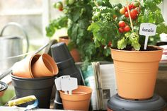 elho grow your own pots: good looking and made from recycled synthetics