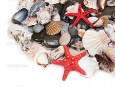 Заделать камни моря и снарядов — стоковое изображение #33667011