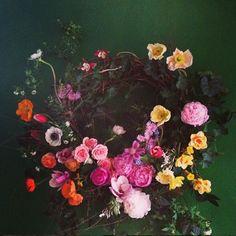 Brrch Floral