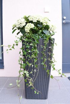 Loving white style: Etupihan terassi & Blommor ruukut - All For Garden Front Garden Landscape, Terrace Garden, Garden Pots, Garden Landscaping, Front Door Planters, Front Yard Patio, Outdoor Pots, Outdoor Gardens, Small Front Gardens