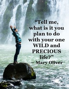 Upgrade your mindset - maximise your results Mary Oliver, Achieve Success, Woman Quotes, Success Quotes, Mindset, Self, How To Plan, Movie Posters, Life