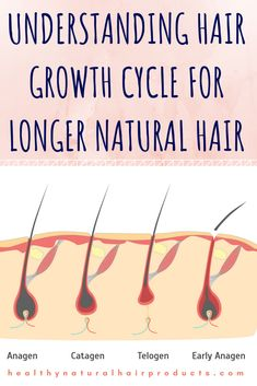 Understanding Hair Growth Cycle