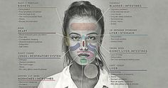 Face Mapping: The Location of The Acne Can Reveal Problem with These Organs Merida, Chinese Face Map, Funny Greek Quotes, Poor Circulation, Face Mapping, Respiratory System, Hormone Imbalance, Regular Exercise, Skin Problems