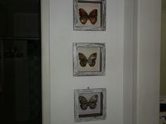 Quadro de borboletas pátina com vela e arte francesa.