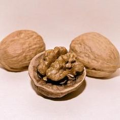Deluxe English Walnut Tree Collection (Stark Champion English and Lake English (both grafted))