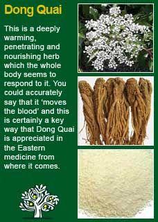Richard Whelan ~ Medical Herbalist ~ Dong Quai