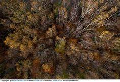 Kacper Kowalski aerial photography / zdjecia lotnicze Kacpra Kowalskiego - jesień