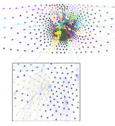 A complex network graph can help you understand the structure of an organization