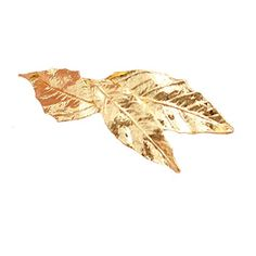 Amazon.com   Set of 2 Gold Tone Leaf Hair Barrettes 88df9a33fe9e
