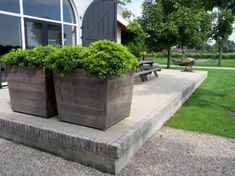 Square tapered Concrete Pots Pinned to Garden Design - Pots & Planters by Darin Bradbury.