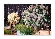Washington Dc Hotels, Washington Dc Wedding, Proposal Photography, Engagement Photography, Perfect Image, Perfect Photo, Dc Weddings, Wedding Events, Love Photos