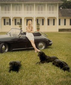 my dream... nice house, dogs and a wonderful car (not to mention, looking this fabulous)