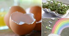 8 usos para las cáscaras de huevo