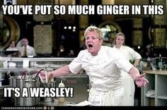 Oh my my my. These Gordon memes always make me laugh. I've seen too many episodes of Hell's Kitchen