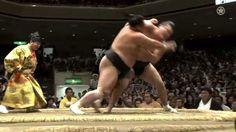GRAND SUMO TOURNAMENT  Japanese national sport SUMO