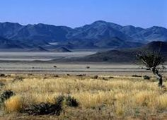 Namibia introduces bill to ban foreign ownership of land Africa News, New Africa, South Africa, African Countries, Rafting, United States, Beef, America, Country