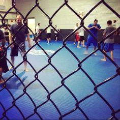 Is Peak Performance Full of Hardcore UFC Types? Brazilian jiu-jitsu, kickboxing and mixed martial arts are for everyone. Peak Performance, Brazilian Jiu Jitsu, Mixed Martial Arts, Kickboxing, Muay Thai, Ufc, Type, Fans, Texas