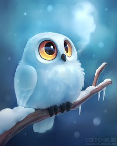 Winter Owl by Chiakiro - Süße Viecher / Sooo cute! Cute Animal Drawings, Cute Drawings, Cute Owl Drawing, Owl Drawings, Funny Owl Pictures, Funny Owls, Cute Owl Cartoon, Owl Artwork, Cute Cartoon Wallpapers