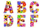 Pictures of Full Floral Alphabet Isolated on White - Letters A to Z k16570468 - Search Stock Photos, Images, Print Photographs, and Photo Clip Art - k16570468.jpg
