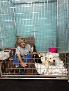 A volunteer at a shelter in Louisville, Kentucky is going above the usual volunteer duties to help get a shelter dog adopted. She spent her entire weekend with the pit bull mix dog named Boss Man, living with him in his kennel.