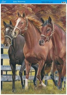 All The Pretty Horses, Beautiful Horses, Arte Equina, Horse Artwork, American Quarter Horse, Horse Portrait, Dressage Horses, Horse Drawings, Equine Art
