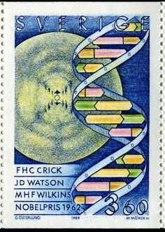 DNA, the double-helix, genes & genetics - Stamp Community Forum.  Nobel Prize for Physiology or Medicine (1962)