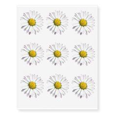 White and yellow wild daisy temporary tattoos