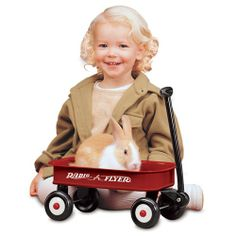 Buy Radio Flyer - Little Red Wagon at Mighty Ape Australia. A miniature version of the original! This Little Red Wagon is a mini version of the original wagon you loved as a kid! Red Wagon Party, Toy Wagon, Radio Flyer Wagons, Kids Toy Store, Online Toy Stores, Little Red Wagon, Ride On Toys, Plush Animals, Novelty Gifts