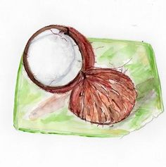 Coconut: Have You Tried One Recently?