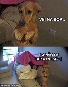 Tadinho...