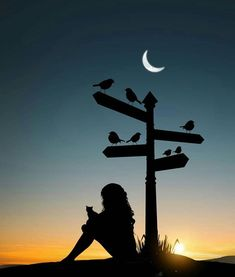 How lovely are Abdullah Evindar mixed media collages! In this series the artist combined silhouettes with nature and landscapes. Silhouette Photography, Moon Photography, Shadow Pictures, Cool Pictures, Night Sky Wallpaper, Girl Silhouette, Shadow Art, Sky Aesthetic, Jolie Photo