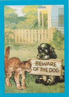 Beware of the Dog (not really!)