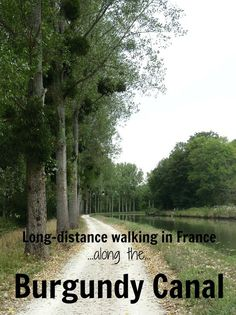 Many parts of the Burgundy Canal are busy with a steady stream of holiday makers.But spend enough time walking its shores and you'll soon find yourself alone in surroundings much the same as they have been for the last 200 years. Follow along the same path the horses walked pulling the first barges along the canal.  #walkingholidayinfrance