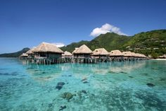 Moorea La Ora Beach Resort Prices for those Bungalows stars at $500/Night, they're very fancy too! if you ever travel to the Pacific Ocean I...