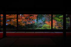 宝泉院 京都