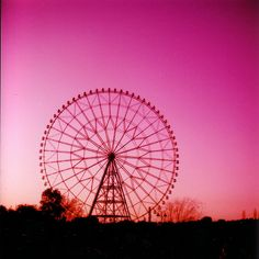 Pink Sky and Ferris Wheel