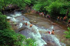 Asheville North Carolina Top 50 Summer Festivals & Events