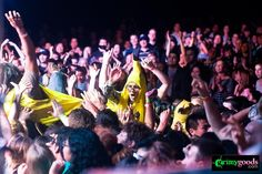 concert crowd surfing photos http://www.grimygoods.com/2014/03/02/the-best-concerts-in-los-angeles-march-3-9/