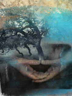 tree in hands.