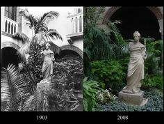 Midwinter Tropics in Isabella Gardner's time and now. Photo at left: T.E. Marr, 1903.