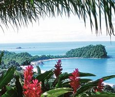 Just imagine an infinity edge #pool with a #view like this! It's a good day for #costarica dreaming! #crexperts #manuelantonio