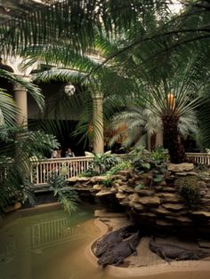 Beautiful old reptile-house-at-forest-park-st-louis-zoo-st-louis-missouri