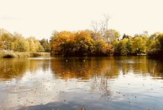 Attum Lake/ made by MSM Photography 2017 Photography 2017, In This Moment, River, Nature, Outdoor, Outdoors, Naturaleza, Outdoor Games, Nature Illustration