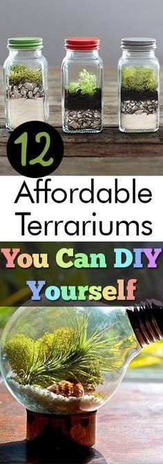 12 Affordable Terrariums You Can DIY Yourself| Terrariums, DIY Terrarium, Terrarium Projects, Indoor Gardening, Indoor Gardening Tips, DIY Gardening Projects, DIY Terrarium, Make Your Own Terrarium #DIYTerrarium #IndoorGarden #Home