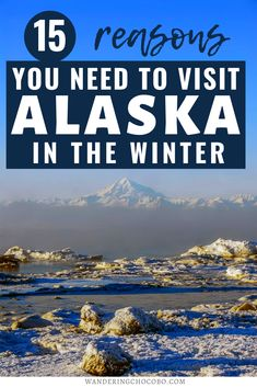 Check out these 15 reasons to visit Alaska in winter that will have you heading north to play in the snow and watch the Aurora. I things to do in Alaska I USA travel I what to do in Alaska I winter in Alaska I winter travel I where to go in Alaska I places to go in Alaska I Alaska travel I visit Alaska I Alaska attractions I Alaska tourism I winter travel in Alaska I when to visit Alaska I local tips for Alaska I Alaska local travel tips I activites to do in Alaska in winter I #Alaska… Alaska Tours, Alaska Travel, Usa Travel, Travel Tips, Winter Travel Packing, Winter Holiday Destinations, Northern Lights Tours, Alaska Adventures, Visit Alaska