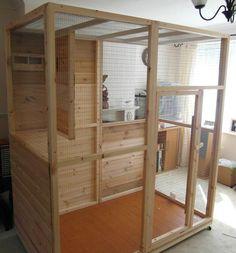 Build Indoor Bird Aviary #howtobuildanaviary #parrotcageideas #buildaviary #parrotcagediy