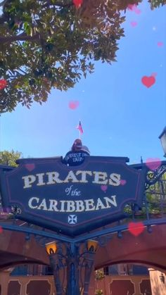 DISNEYLAND IS OPEN!!!! Disney Planning, Beautiful Places To Travel, Disney Vacations, Good Movies, Disneyland, Besties, Funny Animals, Caribbean, Viajes