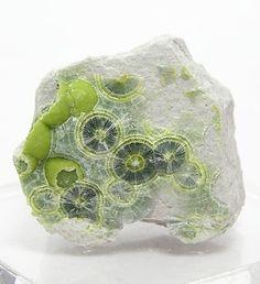 ronbeckdesigns:  Green Wavellite Radiating Crystals on Chert by FenderMinerals